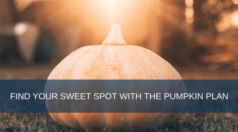 Sweet Spot - Pumpkin Plan